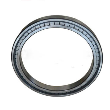 Professional full complement cylindrical roller bearing SL07080C5S1B