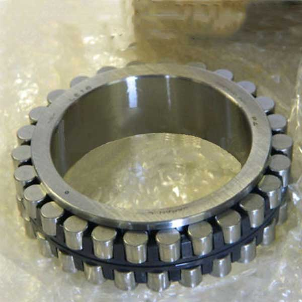RSL18 3038 full complement cylindrical roller bearing without out rings​